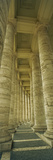 Colonnades of a Basilica, St. Peter's Basilica, St. Peter's Square, Rome, Italy Photographic Print by  Panoramic Images