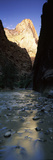River with Rock Formations in the Background, Virgin River, Zion National Park, Utah, USA Photographic Print by  Panoramic Images