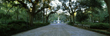 Walkway with Forsyth Fountain in the Background, Forsyth Park, Savannah, Chatham County, Georgia... Photographic Print by  Panoramic Images