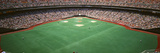 Spectator Watching a Baseball Match, Veterans Stadium, Philadelphia, Pennsylvania, USA Photographic Print by  Panoramic Images
