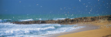 Waves Breaking on the Coast, Morbihan, Brittany, France Photographic Print by Panoramic Images