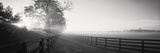 Ranch at Dawn, Woodford County, Kentucky, USA Photographie par Panoramic Images 