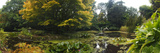 Pond with Trees in Autumn, Trewidden Garden, Penzance, Cornwall, England Photographic Print by Panoramic Images