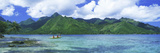 Polynesian People Rowing a Yellow Outrigger Boat in the Bay, Opunohu Bay, Moorea, Tahiti, French... Photographic Print by  Panoramic Images