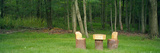 Homemade Rustic Children's Log Table and Chairs in a Forest, Twinsburg, Summit County, Ohio, USA Photographic Print by  Panoramic Images