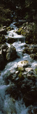 River Flowing Through Rocks, Bluhnbach-Valley, Salzburg, Austria Photographic Print by  Panoramic Images