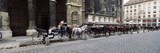 Horsedrawn Carriages at a Town Square, Stephansplatz, Vienna, Austria Photographic Print by  Panoramic Images