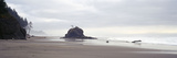 Coast La Push Olympic National Park WA Photographic Print by Panoramic Images