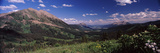 Wildflowers with Mountains in the Background, Crested Butte, Gunnison County, Colorado, USA Photographic Print by  Panoramic Images