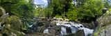 Waterfall in a Forest, Black Linn Falls, River Braan, the Hermitage, Dunkeld, Perthshire, Scotland Photographic Print by  Panoramic Images