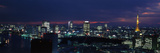 Tokyo Tower Tokyo Japan Photographic Print by  Panoramic Images
