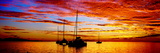 Silhouette of Sailboats in the Ocean at Sunset, Tahiti, Society Islands, French Polynesia Photographic Print by  Panoramic Images