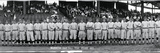 Washington Baseball Team 1913 Photographic Print by  Panoramic Images