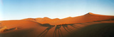 Shadows of Camel Riders in the Desert at Sunset, Sahara Desert, Morocco Fotografie-Druck von Panoramic Images