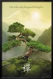 La montagne zen Affiches