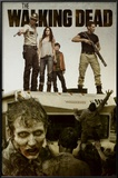 The Walking Dead - Attack Photo