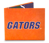 Florida Sport Tyvek Mighty Wallet Wallet