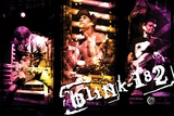 Blink 182 Live Collage Print