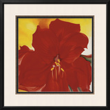 Red Amaryllis, c.1937 Posters by Georgia O'Keeffe