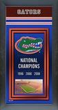 Florida Gators Framed Championship Banner Framed Memorabilia