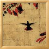 Colibri II Print by Chris Donovan