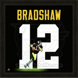 Terry Bradshaw, Steelers photographic representation of the player's jersey Framed Memorabilia