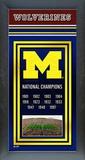Michigan Wolverines Framed Championship Banner Framed Memorabilia
