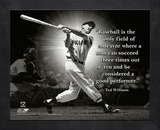 Ted Williams, Boston Red Sox, ProQuote Framed Memorabilia