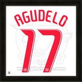 Juan Agudelo, Red Bulls  representation of the player&#39;s jersey Framed Memorabilia