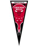 Chicago Bulls Pennant Framed Memorabilia
