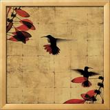 Colibri I Prints by Chris Donovan