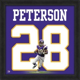 Adrian Peterson, Vikings photographic representation of the player&#39;s jersey Framed Memorabilia