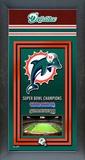 Miami Dolphins Framed Championship Banner Framed Memorabilia