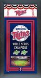 Minnesota Twins Framed Championship Banner Framed Memorabilia