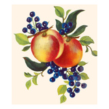 Peaches and Blueberries Prints