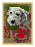 White Terrier Giclee Print by Cathy Cute