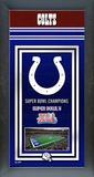 Indianapolis Colts Framed Championship Banner Framed Memorabilia