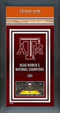 Texas A&M University Women's Basketball National Champions Framed Championship Banner Framed Memorabilia