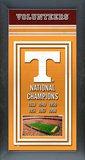 University of Tennessee Volunteers Framed Championship Banner Framed Memorabilia