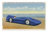 The Bluebird 5 Prints by R.H. Le Sesne