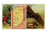 Indiana Print by  Arbuckle Brothers