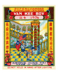 Yan Kee Boy Supercharged Flashlight Crackers Print