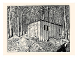 Mr. Sneekum Walked into the Woods and Listened Prints by Luxor Price
