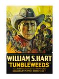 Tumbleweeds Art