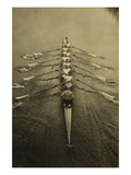 Cambridge Crew Rows their Way in Competition Posters