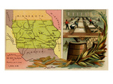 Iowa Prints by  Arbuckle Brothers