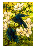 Hibiscus and Parrots Poster by William Comfort Tiffany