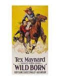 Wild Born Premium Giclee Print