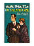 The Splendid Crime Poster