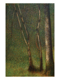 Forest at Pont Aubert Lámina por Georges Seurat